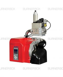 Ecoflam Max Gas 250 Gas Burner